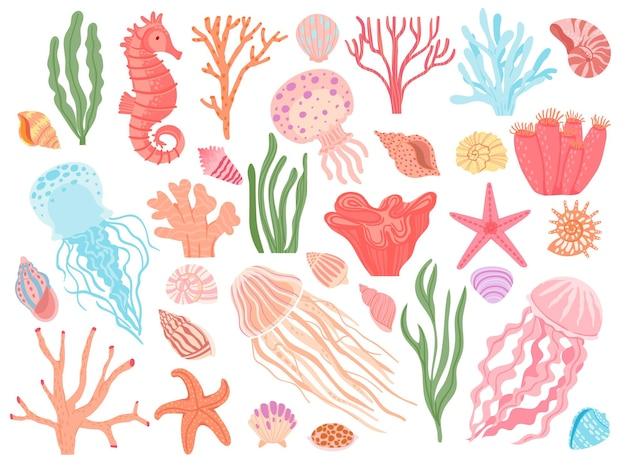 Elementi dell'oceano. alghe del fumetto, coralli, conchiglie e animali della barriera corallina. stelle marine, cavallucci marini e meduse. insieme di vettore decorativo nautico. ecosistema sottomarino, creature acquatiche naturali