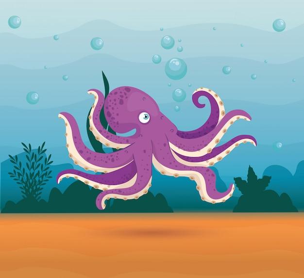 Polpo animale marino nell'oceano, abitante del mondo del mare, simpatica creatura subacquea, habitat marino