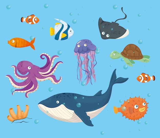 Polpo animale marino nell'oceano, con simpatiche creature sottomarine, habitat marino