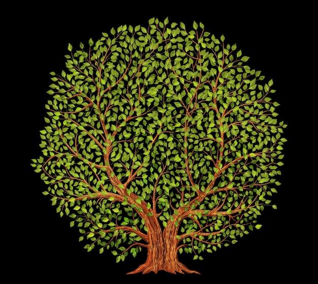 Vecchio albero su sfondo nero