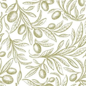 Modello senza cuciture verde di oliva fogliame di struttura della frutta dell'albero disegnato a mano di vettore su fondo bianco nature