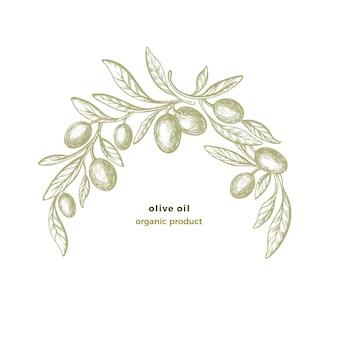 Modello ad arco d'oliva. disegnare a mano il telaio del cerchio. illustrazione rustica botanica