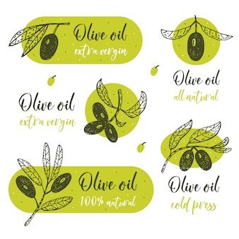 Ramo d'ulivo con lettering illustrazione disegnata a mano
