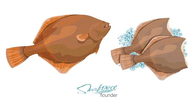 Olive flounder illustrazione vettoriale pesce di mare su cubetti di ghiaccio isolati su sfondo bianco