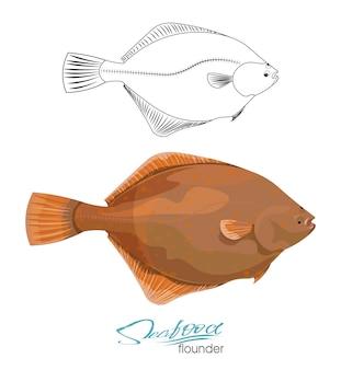 Olive flounder illustrazione vettoriale pesce di mare isolato su sfondo bianco pesce di mare silhouette lineare