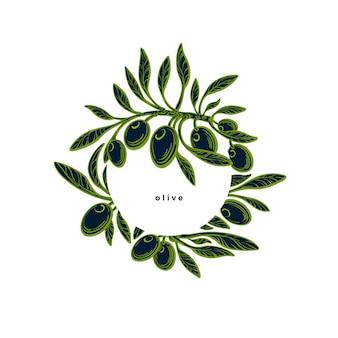 Cornice di oliva in cerchio trama grafica illustrazione vettore ramoscello bacca verde etichetta disegnata a mano italia cibo mediterraneo