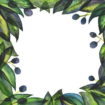 Giardino di ulivi, frutti e foglie di ulivo freschi. cornice quadrata per social network e biglietto di auguri e menu. arte astratta dell'acquerello disegnata a mano tracciata