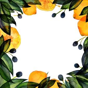 Cornice quadrata oliva e limone ad acquerello disegnato a mano