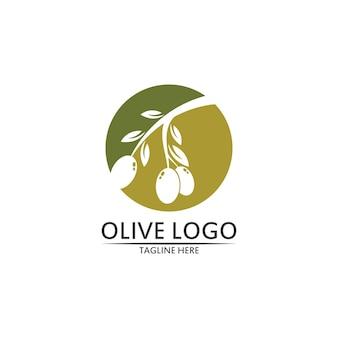 Disegno vettoriale modello logo oliva