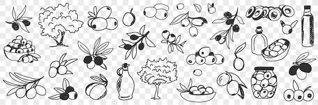 Insieme di doodle di produzione di olio d'oliva