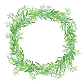 Corona verde oliva isolata su priorità bassa bianca. foglie di albero del tè verde.