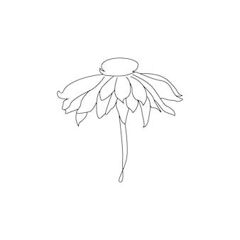 Un disegno a tratteggio di foglie e fiori a linea continua