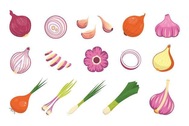 Set di icone differenti di cipolla e aglio. raccolta di verdure organiche fresche del fumetto intero e affettato.