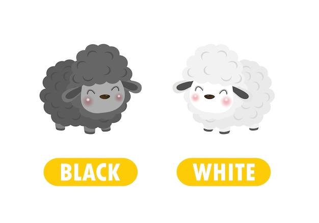 Contrario di parole in bianco e nero opposto per bambini