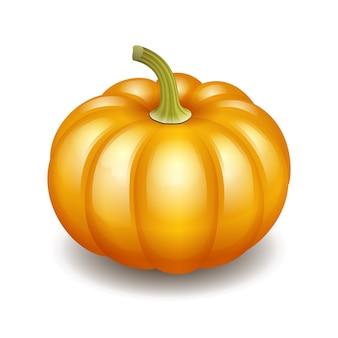 Icona arancione della zucca di autunno, simbolo del ringraziamento del raccolto. illustrazione