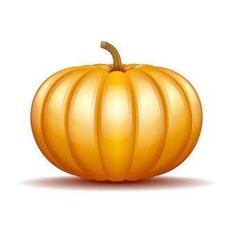Icona arancione della zucca di autunno, simbolo del ringraziamento del raccolto.