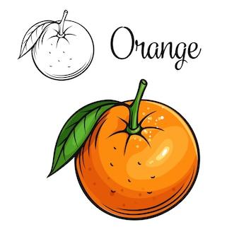 Icona di disegno arancione