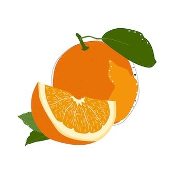 Illustrazione di vettore isolato frutta arancione su priorità bassa bianca. concetto di cibo estivo. disegno naturale.