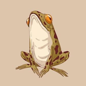Una normale rana della foresta con la testa in aria