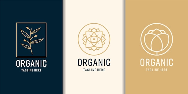 Insieme di logo del modello di albero organico femminile e moderno.