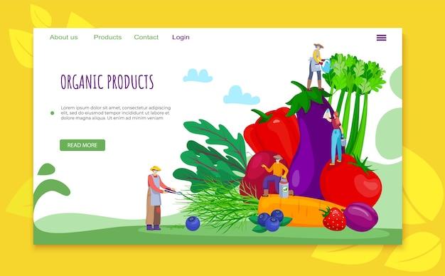 Concetto di prodotto piatto biologico