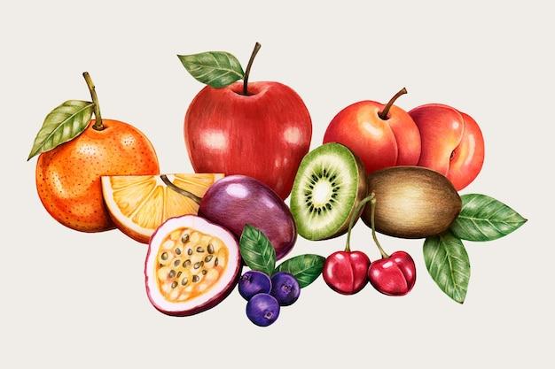 Insieme disegnato a mano di vettore dell'annata di frutta biologica
