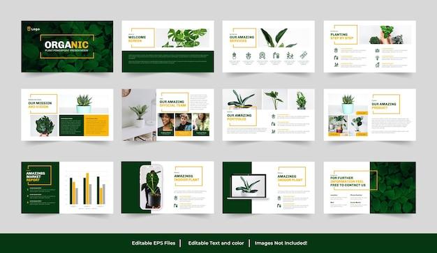 Modello di presentazione di piantagioni organiche o verdi
