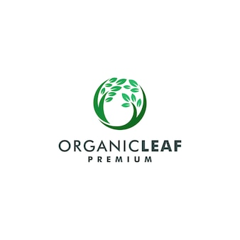 Illustrazione di vettore di progettazione di logo della natura organica della foglia