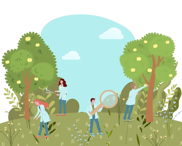 La medicina biologica da erbe e piante selvatiche, i medici ricercano l'illustrazione piana dei prodotti di naturopatia del landscsape della foresta.