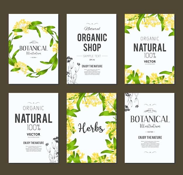 Volantini organici