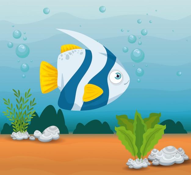 Pesci ornamentali animali marini nell'oceano, abitante del mondo del mare, simpatica creatura subacquea, habitat marino