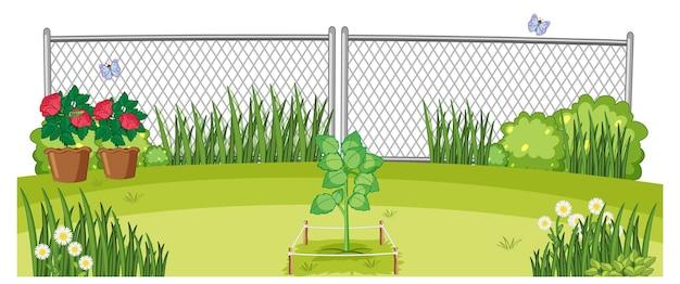 Scena del giardino di piante da esterno
