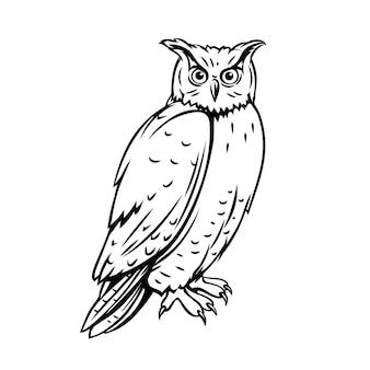 Uccello del gufo. icona di contorno per lo zoo illustrazione di inchiostro incisione