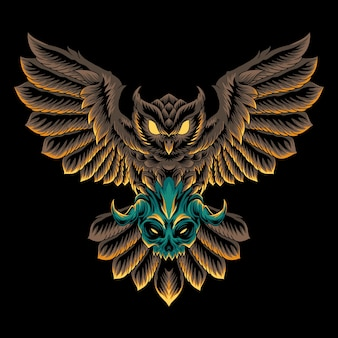 Illustrazione del cranio dell'uccello del gufo