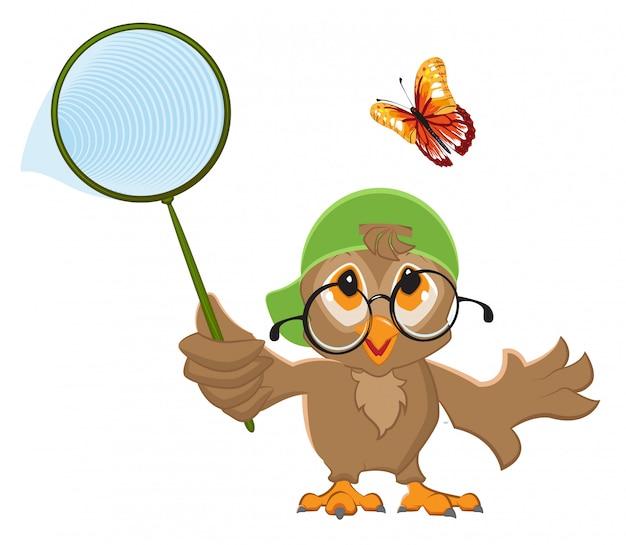Il gufo cattura la farfalla. rete per uccelli e farfalle