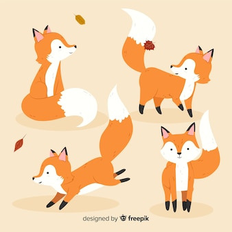 Confezione di volpi disegnate a mano