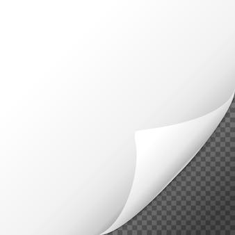 Pagina arricciata effetto ombra sul foglio di carta bianco