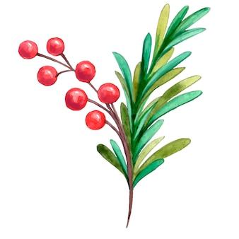 Dipinto con acquerelli ramoscello di natale con bacche rosse e aghi verdi albero di natale