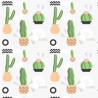 Modello di piante di cactus diversi di colore pallido