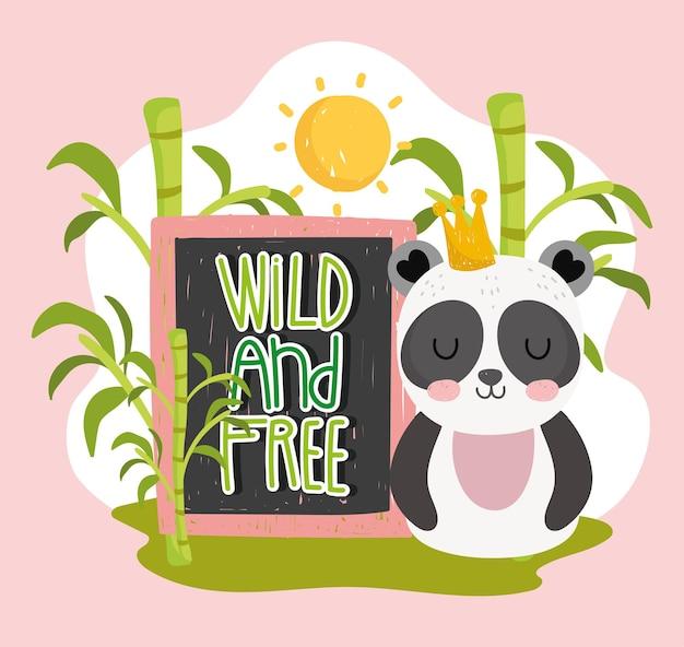 Panda selvaggio e libero