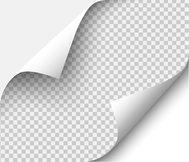 Carta bianca. illustrazione