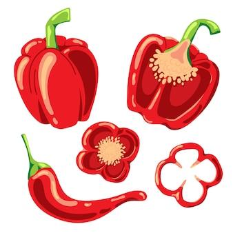 Paprika e peperoncino piccante. illustrazione isolata.