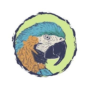 Logo disegnato a mano dell'annata dell'illustrazione della testa del pappagallo nel cerchio