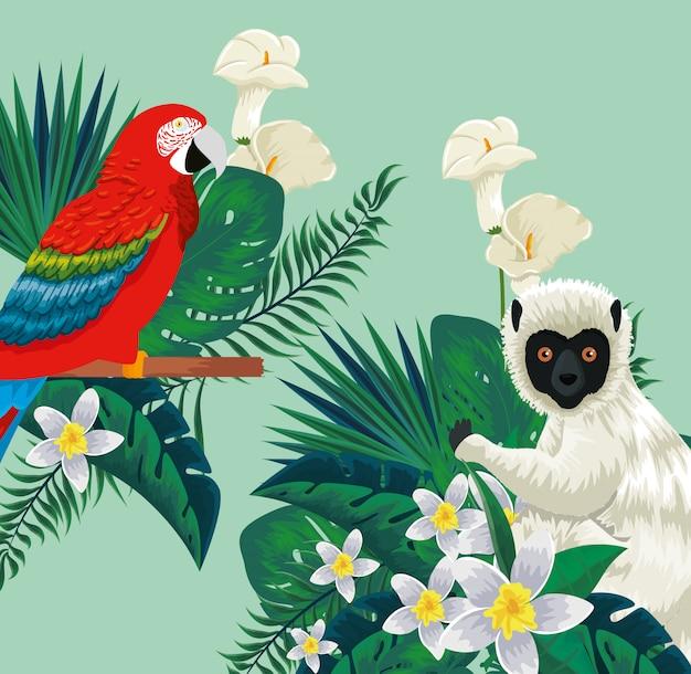 Animali pappagallo e lemure con fiori piante e foglie
