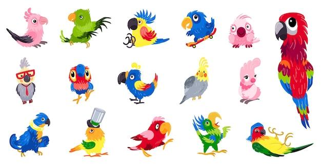 Set pappagallo. insieme del fumetto dell'illustrazione del pappagallo