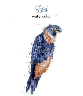 Acquerello di uccello tropicale pappagallo