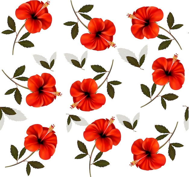 Modello di bellissimi fiori rossi.