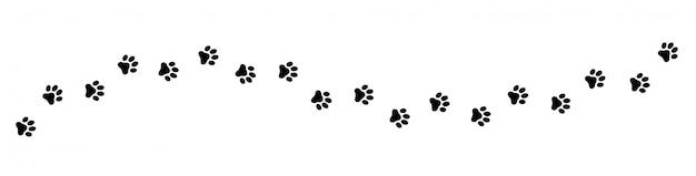 Traccia di zampa di gatto, cane e cucciolo.