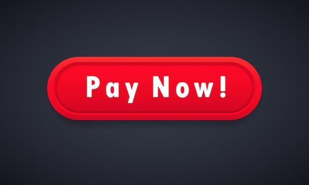 Pulsante paga ora. concetto di commercio elettronico. pagamento on line. vettore su sfondo isolato. env 10.