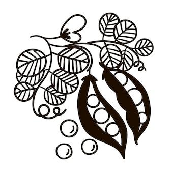 Illustrazione bianca nera del ramo di pisello